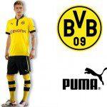 Borussia Dortmund, Heimtrikot Puma e 2 stelle